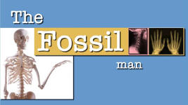 Origins - 1101 The Fossil Man