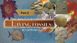 Origins - 1207 Living Fossils - Part 2