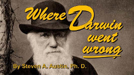 Origins - 1208 Where Darwin Went Wrong