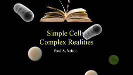 Origins - 1213 Simple Cells Complex Realities