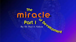 Origins - 1302 The Miracle of Development - Part 1