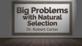 Origins - 1704 Big Problems with Natural Selection