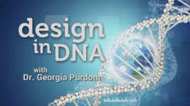 Origins - 1805 Design in DNA