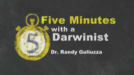 Origins - 1811 Five Minutes with a Darwinist